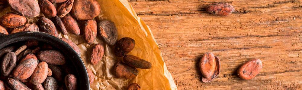 Cacao alimentacion saludable y sostenible